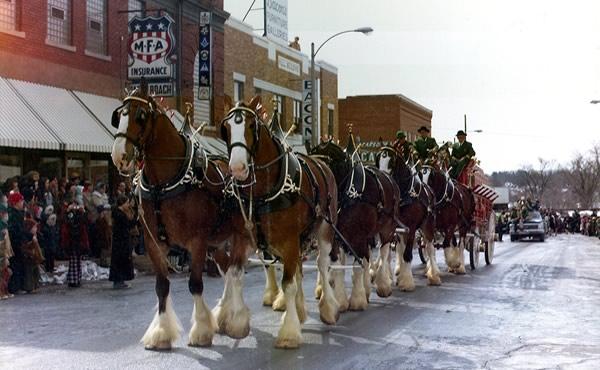1975 St Pat's Parade